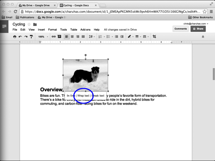image in docs changes when in pdf